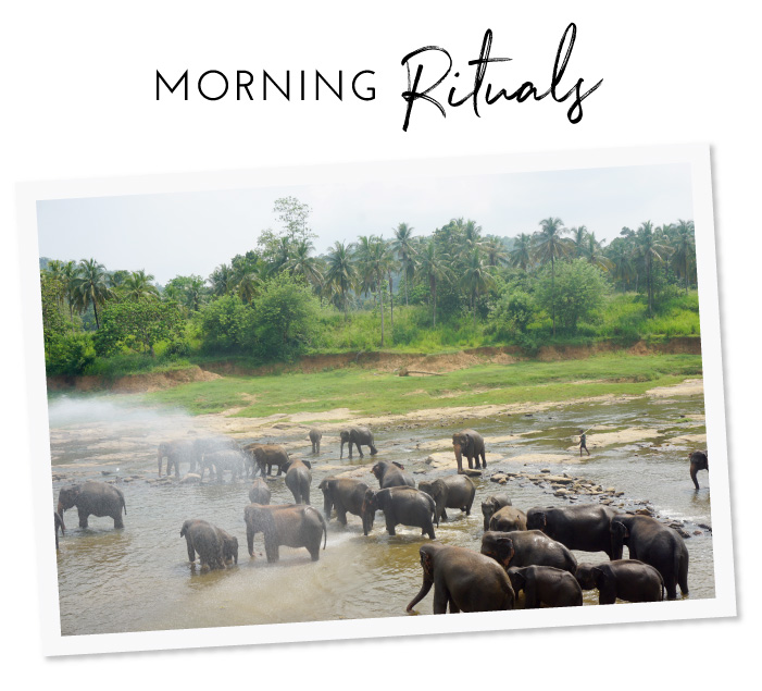 Morning rituals, Sri Lanka