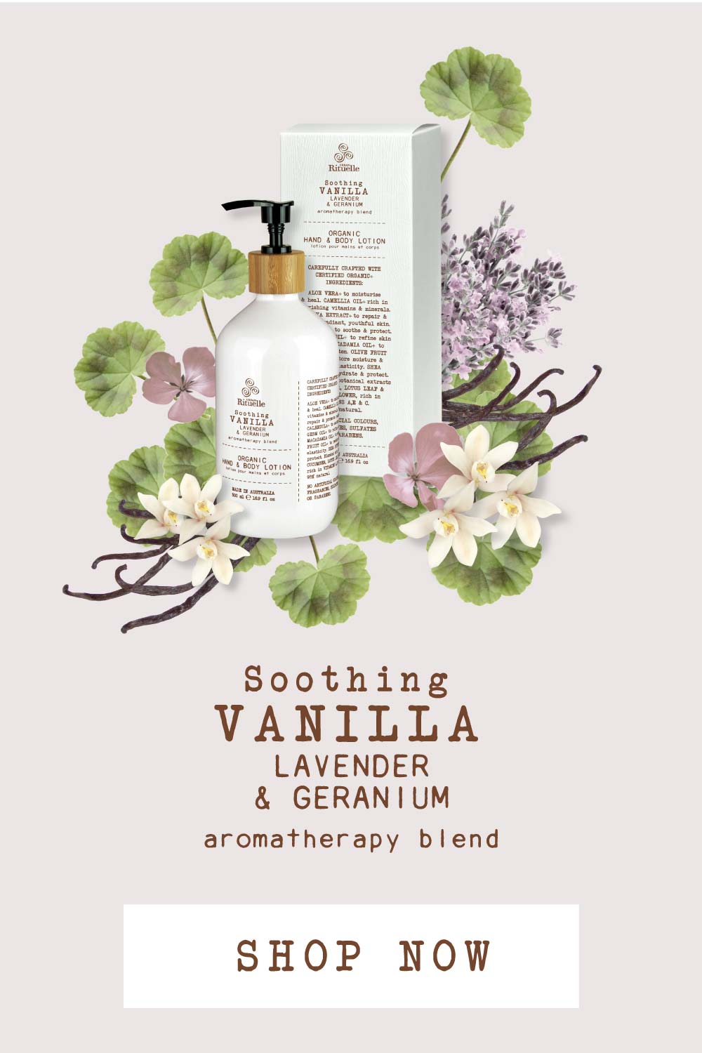The Ingredients Behind this Fan Favourite Lotion